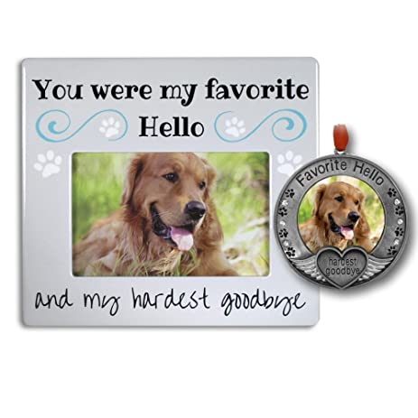 Amazon.com : Pet Memorial Gifts - Pet Frame and Pet Ornament with ...