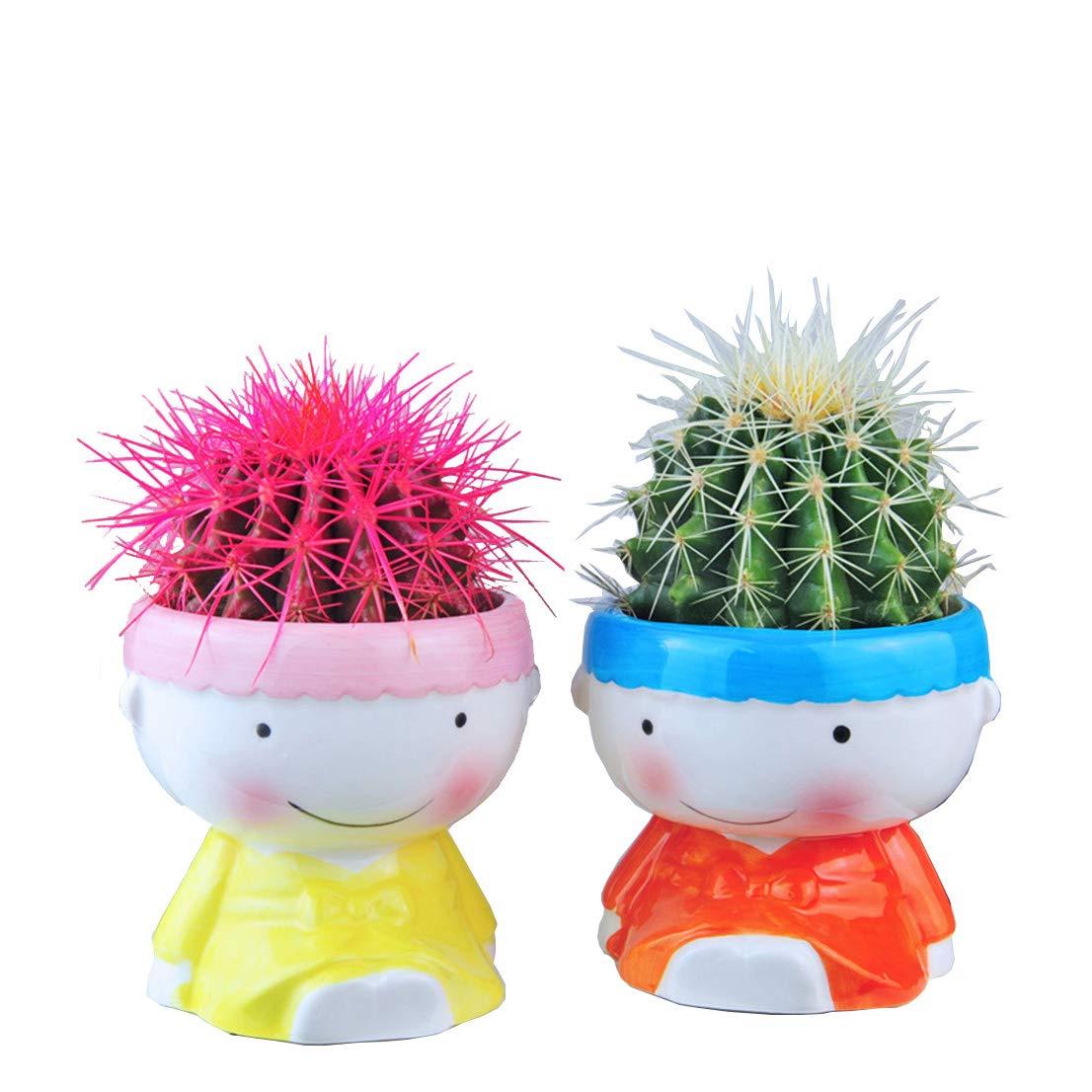 Youfui Home Decor Pot, Succulent Planter Flowerpot Decor for Home Office Desk (Boy&Girl)