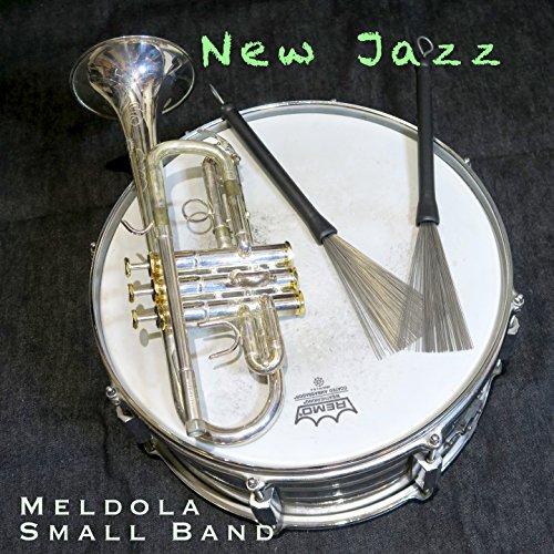 New jazz (feat. Fabio Petretti, Michele Francesconi, Stefano Paolini, Paolo Ghetti, Giuseppe Zanca) [Learning jazz]