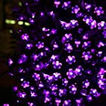 LE Solar Fairy Lights, 7 Meters, Wate...