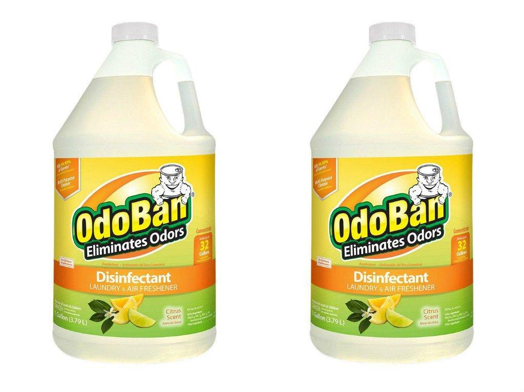 OdoBan 1 Gal Concentrate 2-Pack, Citrus Scent - Odor Eliminator, Disinfectant, Flood Fire Water Restoration