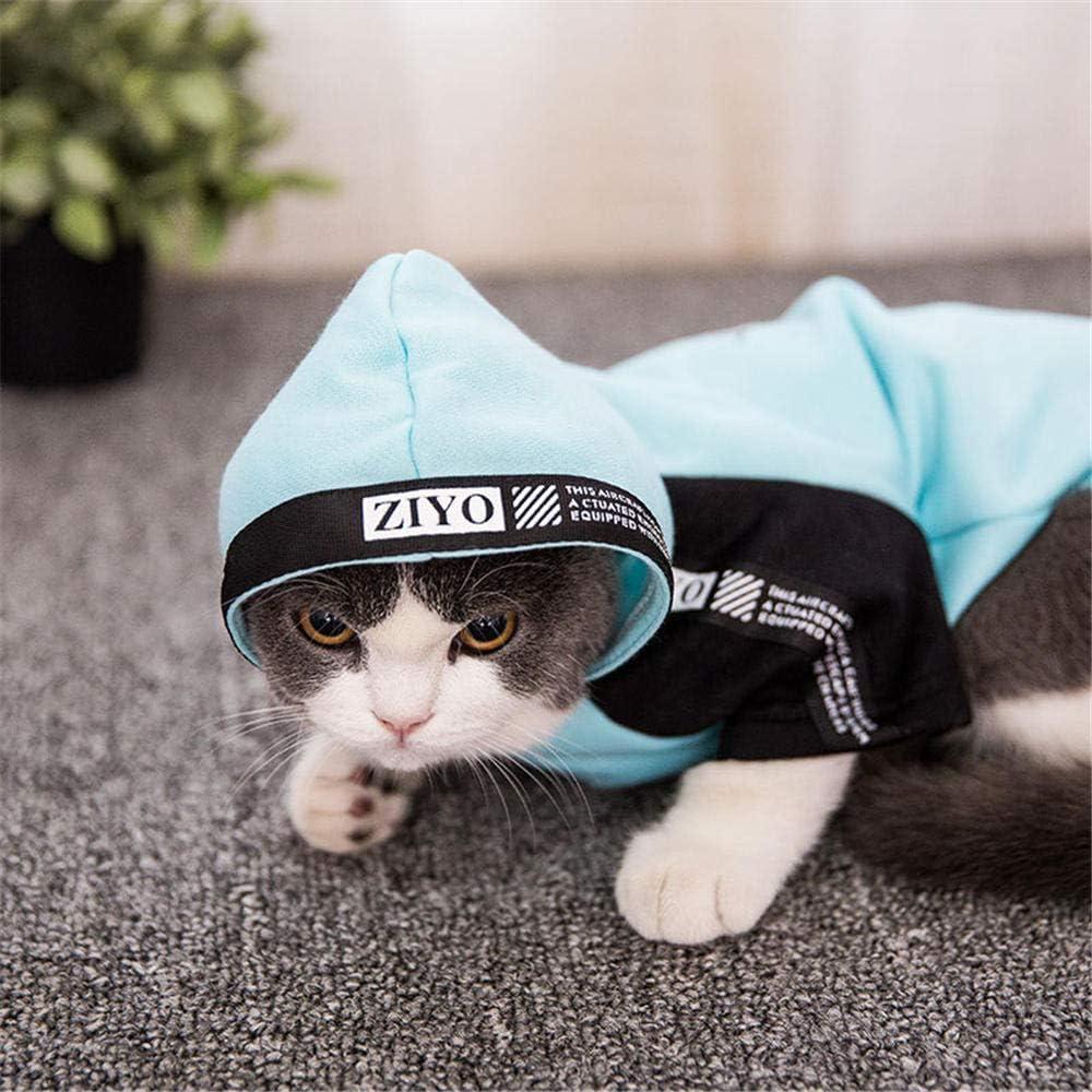 ZHIHAN Jersey esfinge de Dos piernas Gato Corto británico con Ropa con Capucha, Azul, M: Amazon.es: Productos para mascotas