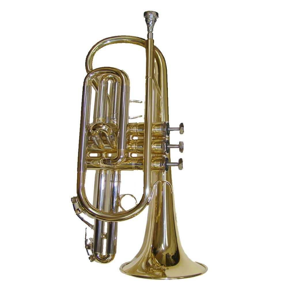 NEW Merano B Flat Gold Cornet with Case WD482