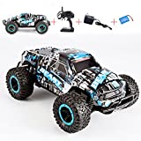 RC Car Off Road Truck Electric High Speed Vehicle with 2.4GHz 4CH 1:16 Buggy Remote Control Race Monster, Rechargeable Race Rock Crawler Racing Car(Blue)