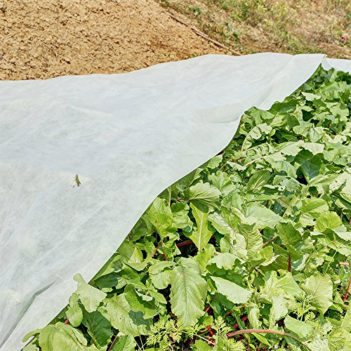 Agfabric Warm Worth Roll Heavy Floating Row Cover & Plant Blanket, 0.9oz Horticultural Fleece of 10x500ft for Frost Protection, Harsh Weather Resistance& Seed Germination by Agfabric (Image #2)