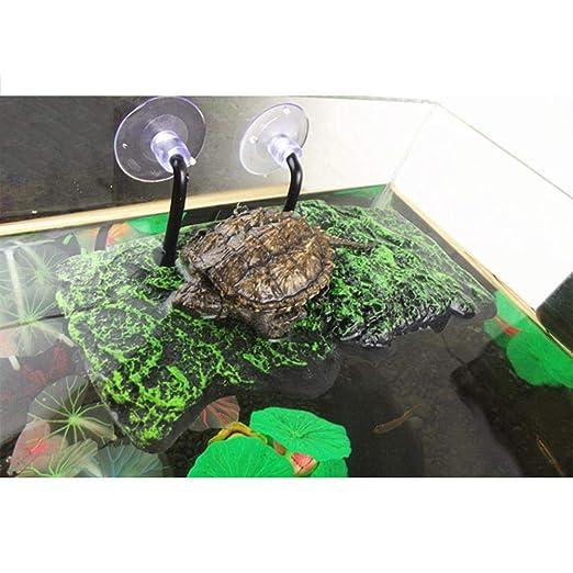 iBaste-ES Acuario Decorativo Pecera Flotante Isla Flotante Tortuga Secado Volver a la Plataforma de Sun decoración Natural: Amazon.es: Productos para ...