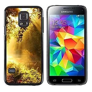 LECELL -- Funda protectora / Cubierta / Piel For Samsung Galaxy S5 Mini, SM-G800, NOT S5 REGULAR! -- Dawn --
