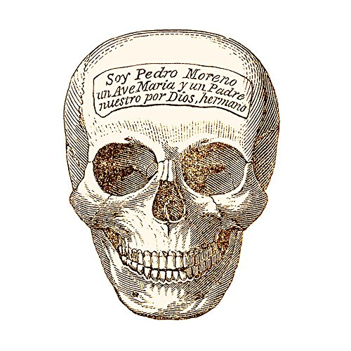 Gifts Delight Laminated 24x24 inches Poster: Skull Sepia Grunge Old Brown Bone Retro Skeleton Death Ancient Vintage Halloween Antique Dark Creepy Head Drawing
