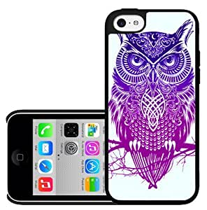 Colorful Artistic Warrior Owl Hard Snap on Phone Case (iPhone 5c)