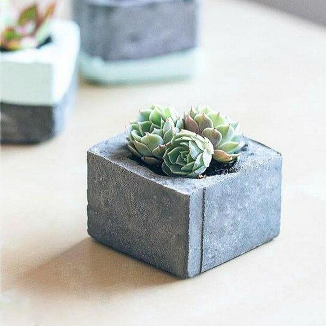 Looing forward to Succulents