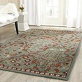 Safavieh Wyndham Collection WYD206A Handmade Blue and Rust Wool Area Rug, 5 feet by 8 feet (5' x 8')