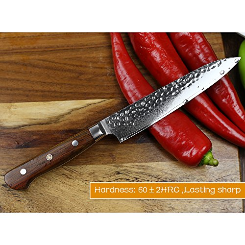 XINZUO Cutlery 6 inch Utility Knife Japanese VG-10 Damascus Steel Kitchen Knife Fruit Knife Peeling Razor Sharp Hammered Finish with Rosewood Handle - Yun Series by XINZUO (Image #4)
