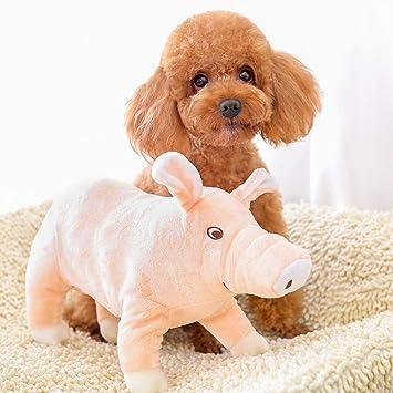 Quietschen Schwein Spielzeug für Hunde: : Haustier