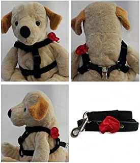 "product image for Diva-Dog 'Red Carnation' Custom 5/8"" Wide Velvet Dog Step-in Harness with Plain or Engraved Buckle, Matching Leash Available - Teacup, XS/S"