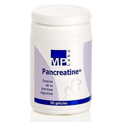 Pancreatina: ayuda a la función pancreática de perros y gatos,