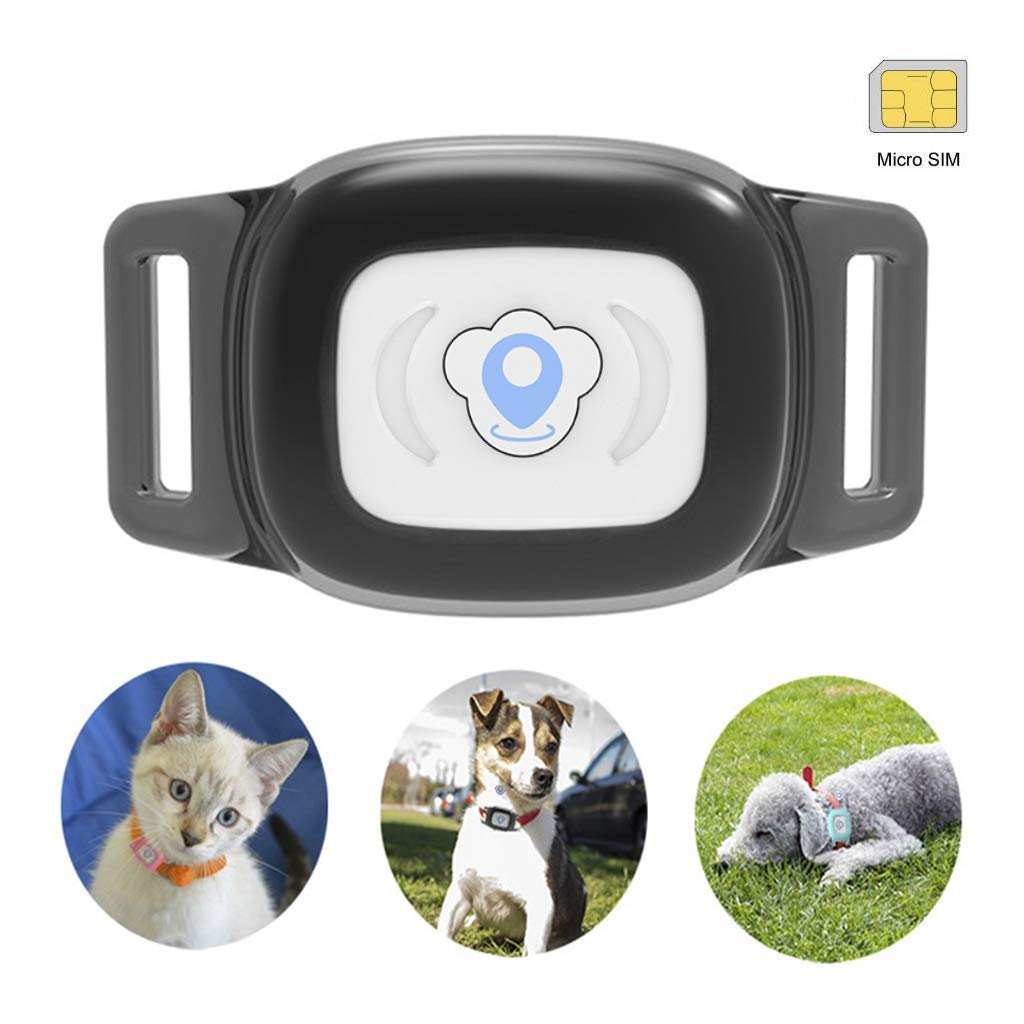 BARTUN Mini Pet Tracker GPS Locator for Dogs Cats 28lb Waterproof IP67 Real Time Activity Monitor AGPS LBS SMS Positioning Tracking Device with Collar Included SIM Card (Black)