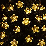 Neretva Solar String Lights,50 LED Fairy Blossom Flower Garden Lights Outdoor Solar String Lights Flower Bulbs for Christmas/Wedding/Party Backdrops Decorations (Warm White)