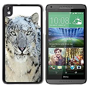 Paccase / SLIM PC / Aliminium Casa Carcasa Funda Case Cover para - Snow Leopard Tiger Furry Winter Animal - HTC DESIRE 816