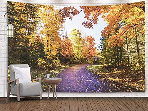 (Bisead Wall Art for Bedroom Tapestry, Map Art Tapestry 80x60 inchs Entrance to Falls State Park During Fall Season Beautiful Autumn Colors Wall Hanging Gifts for Bedroom Dorm Décor)