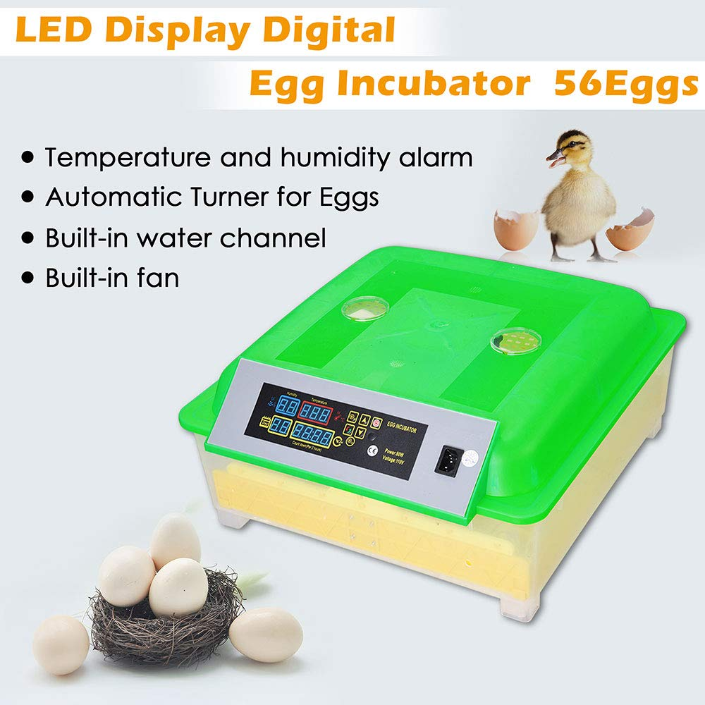 Yescom 80W Digital 56 Egg Incubator Clear Hatcher w/Automatic Turner for Chicken Poultry Duck Bird Egg by Yescom