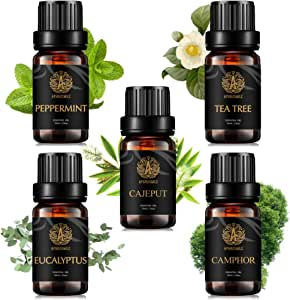 100% Pure Camphoraceous Essential Oil Kit, Therapeutic Grade Eucalyptus Oil Set for Diffuser, 5x10ml Aromatherapy Camphor Essential Oil Kit, Eucalyptus, Cajeput, Peppermint, Tea Tree, Camphor Oil