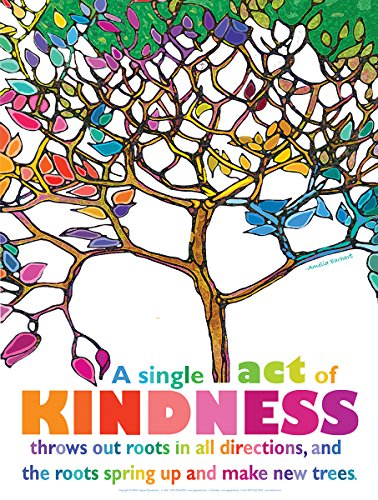 Kindness Laminated Inspirational Poster Featuring a Quote By Aviator Amelia Earhart For Home, Classroom,