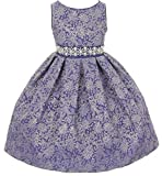 Dreamer P Little Girls Gorgeous Metallic Embroidered Jacquard Gown Flowers Girls Dresses