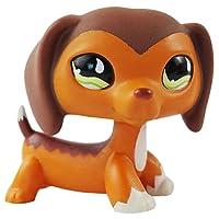 dreamsLE_Pet toy store Pet Shop Teckel Savvy Savvanah Reed LPS Chien Figure Jouet # 675 (Brown)