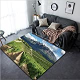 Vanfan Design Home Decorative Vineyards landscape near Wellington South Africa Modern Non-Slip Doormats Carpet for Living Dining Room Bedroom Hallway Office Easy Clean Footcloth