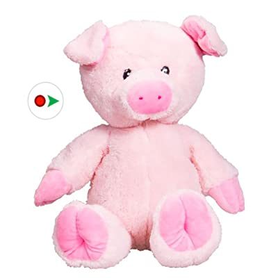 Stuffems Toy Shop Record Your Own Plush 16 inch Pink Pig - Ready 2 Love in a Few Easy Steps: Toys & Games