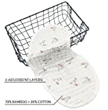 Bamboo Baby Burp Cloths   8 Layers   Pack of 4