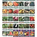 Heirloom Seed Assortment – Collection of 30 Non-GMO, Easy Grow, Gardening Seeds: Vegetable, Fruit, Herb & Flower – Open Pollinated – Radish, Pumpkin, Dill, Eggplant, Sunflower, More