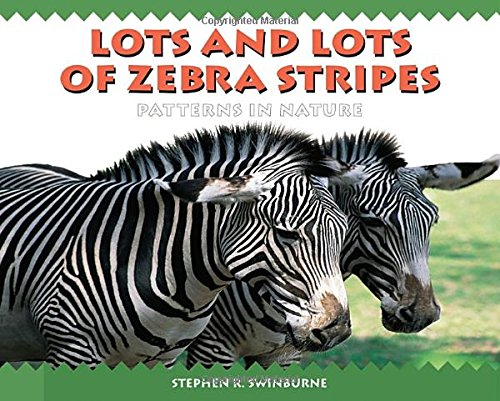 Lots and Lots of Zebra Stripes (Lot Stripe)