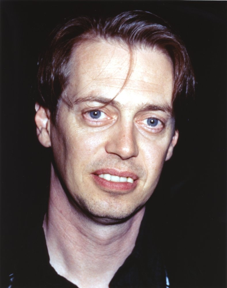 Amazon com steve buscemi smiling in close up portrait photo print 8 x 10 home kitchen