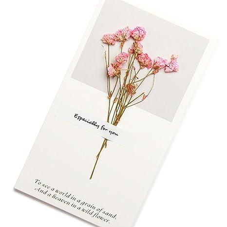 Amazon.com: Surtido de tarjetas de felicitación de flores ...