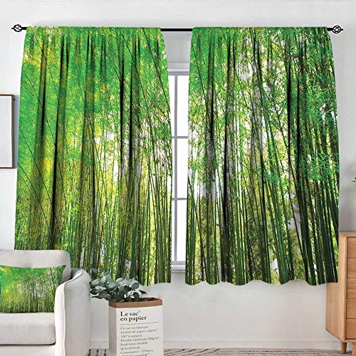 Elliot Dorothy Rod Pocket Curtains Bamboo Trees Decotaions,Natural Bamboo Forest Botanical Garden Photography Print,Insulating Room Darkening Blackout Drapes for Bedroom 63