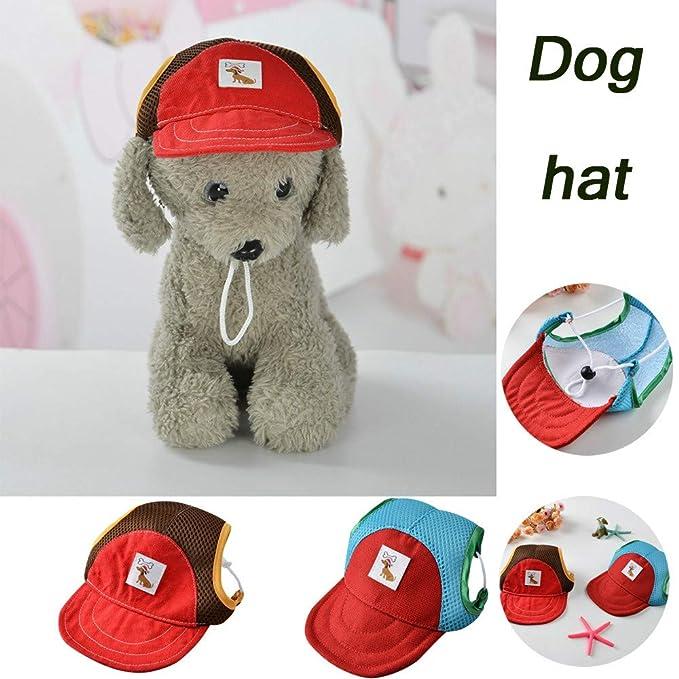 CAOQAO - Gorra de béisbol para Perro, Sombrero con Visera con ...