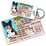 Florida Driver License Custom Dog Tags for Pets (2) and Wallet Card - Personalized Pet ID Tags - Dog Tags For Dogs - Dog ID Tag - Personalized Dog ID Tags - Cat ID Tags - Pet ID Tags For Cats