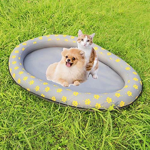 Augproveshak - Flotador de Piscina para Perro o Gato: Amazon.es: Hogar