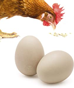 SunGrow Ceramic Chicken Eggs, 2.75 Inches, Encourages Egg Laying and Discourages Pecking and Eating, Great for Broodiness Test and Unique Home Decorations, Made with Durable Ceramic Material, 2 Pack