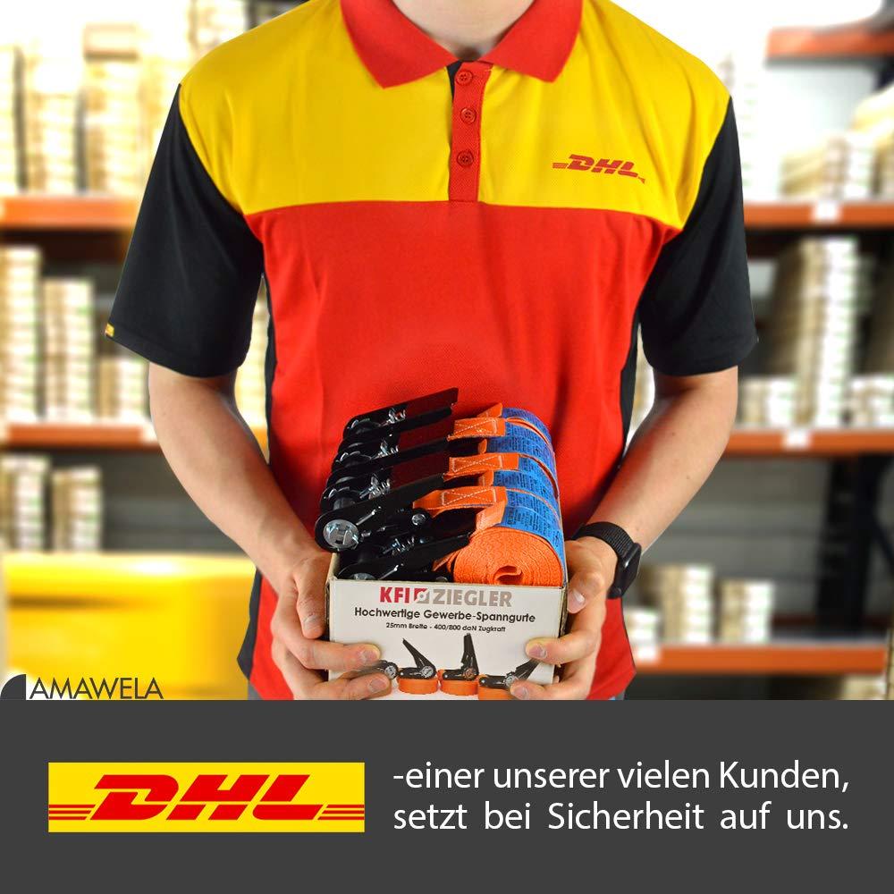 2er Set KFI-Ziegler T/ÜV-gepr/üfte Spanngurte mit Ratsche Ratschengurt einteilig nach EN 12195-2 L/änge: 4 m Zurrgurte 400//800 kg