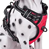 No Pull Dog Harness with Front Clip, Comfortable Reflective Pet Vest Harness with Handle for Puppy Small Dog (Red, XS)