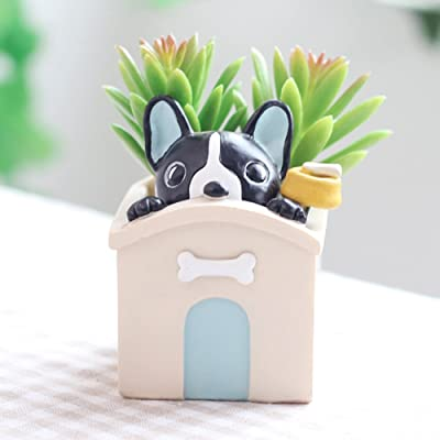 Peyan Cute Voyeur Bulldog Succulent Pots with Drainage Resin Mini Flower Pot Garden Plants Vase Desk Flower Decoration Best Gift to Kids Family Friend: Home & Kitchen