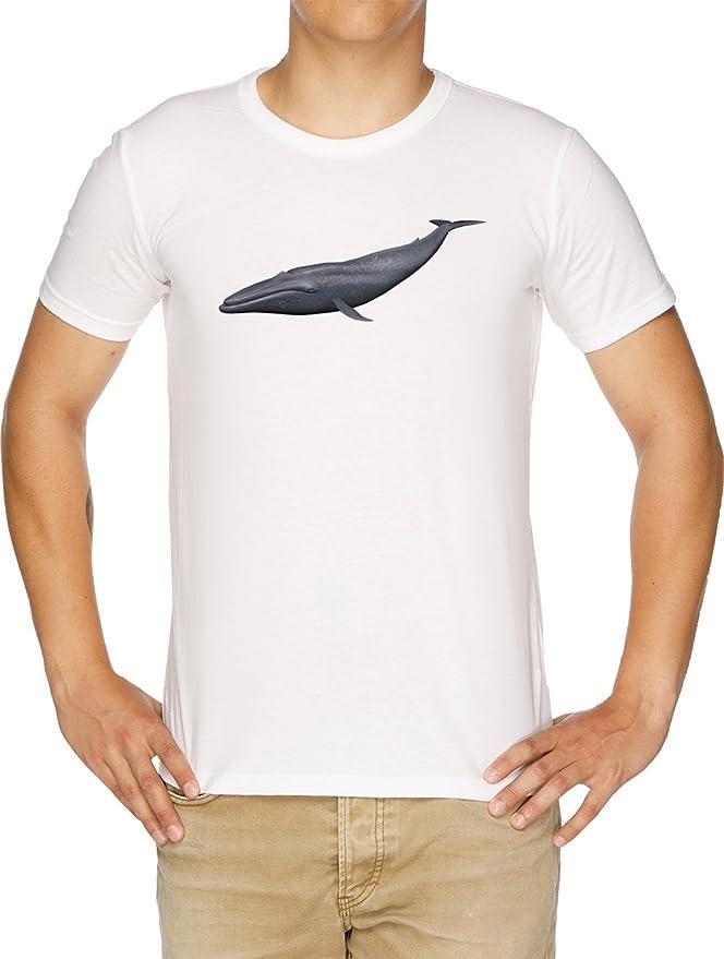 Vendax Azul Ballena Camiseta Hombre Blanco: Amazon.es: Ropa y accesorios