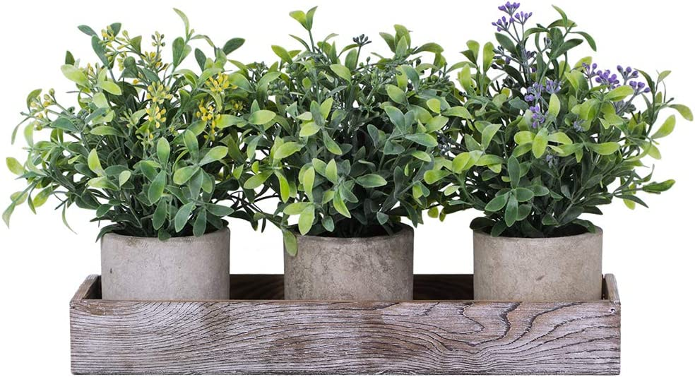 """Set of 3 Mini Artificial Potted Plants Faux Seeded Boxwood Greenery Arrangement with Wood Planter Box for Indoor Office Apartment Wedding Tabletop Decorations 8.5"""" Tall"""