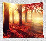 fall pictures - Fall Decor Tapestry by Ambesonne, Sun Beams through Misty Old Forest in Season Morning View Dreamy Scenic Picture,Wall Hanging for Bedroom Living Room Dorm, 80 W X 60 L Inches, Light Yellow and Orange