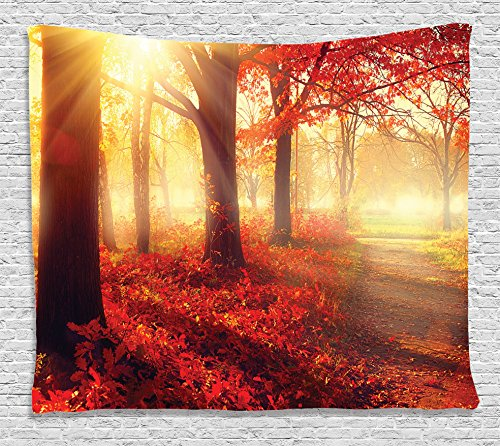 (Ambesonne Fall Decor Tapestry, Sun Beams Through Misty Old Forest in Season Morning View Dreamy Scenic Picture,Wall Hanging for Bedroom Living Room Dorm, 60 W X 40 L Inches, Light Yellow and Orange)