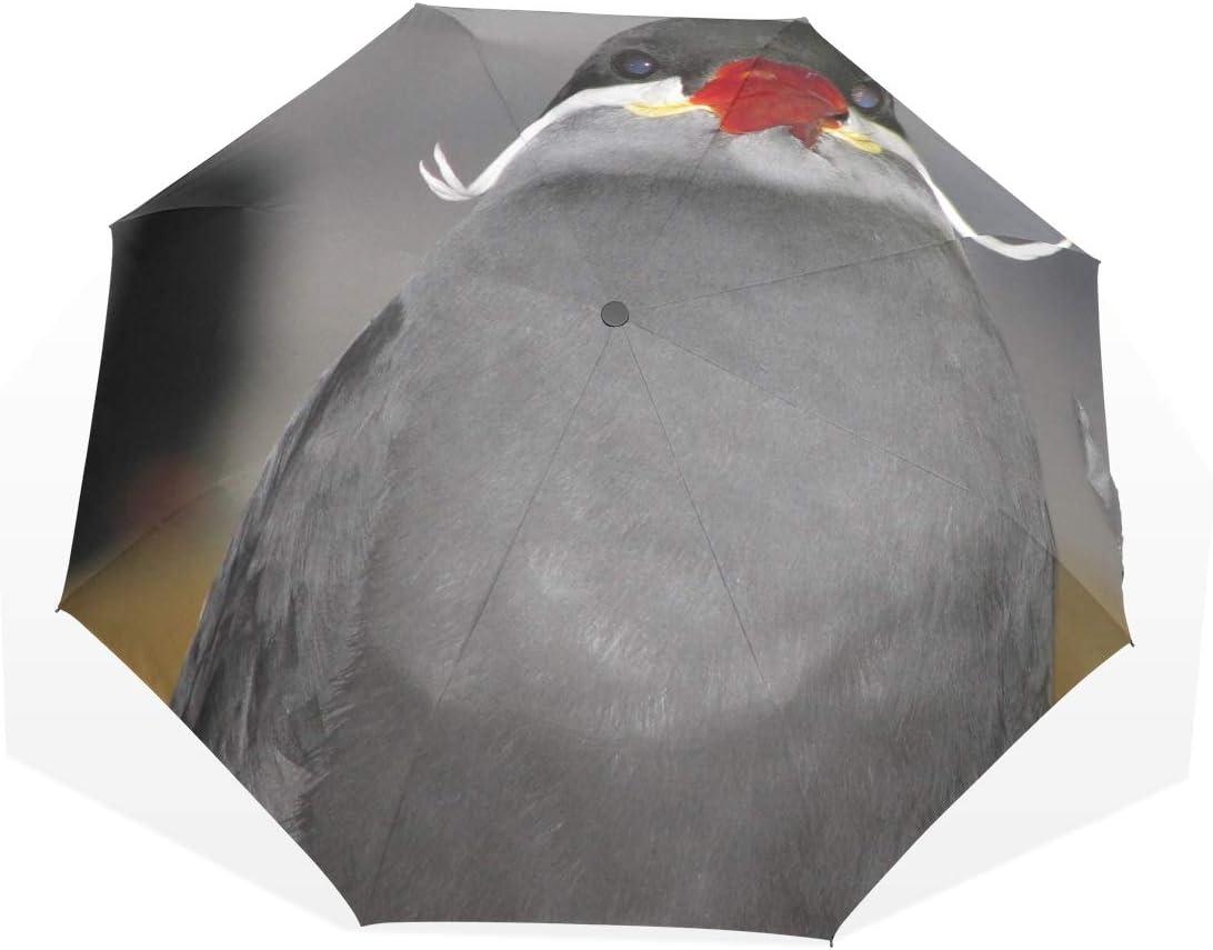Umbrella Parasol Easy Carry Sun Block Windproof Portable Compact Wildlife Gray Bird Wing Beak