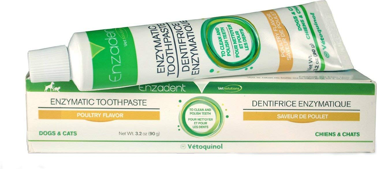 Vet Solutions Enzadent Enzymatic Poultry-Flavored Toothpaste for Dogs & Cats, 90g. Tube