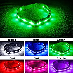 Blazin' Safety LED Dog Collar - USB Rechargeable with Water Resistant Flashing Light - Xsmall Green